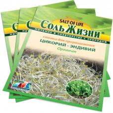 Цикорий - эндивий семена Органик